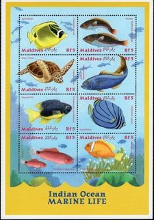Maldives057.JPG