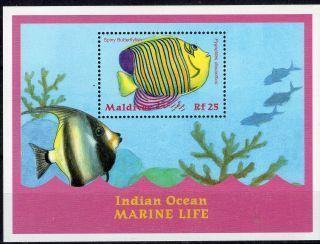 maldives071.JPG